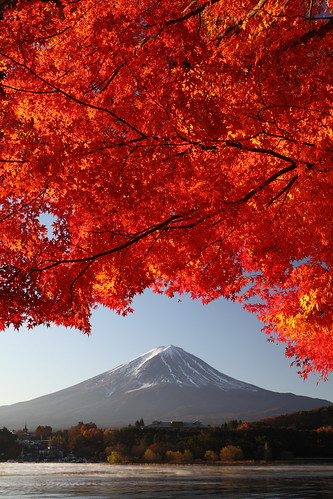 Mt. Fuji and Maple (vertical shot)  (IMG_1765_DPP) | by Fumitaket