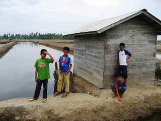 Boys at the shrimp ponds | by East Asia & Pacific on the rise - Blog
