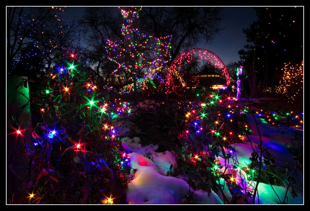 ... Denver Zoo Christmas Lights #2 | By Edward Jenner2010