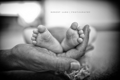 Fathers hands and new born baby feet (Explored) | by Robert Lang Photography