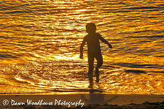 Bliss of the Surf | by Dawn Woodhouse