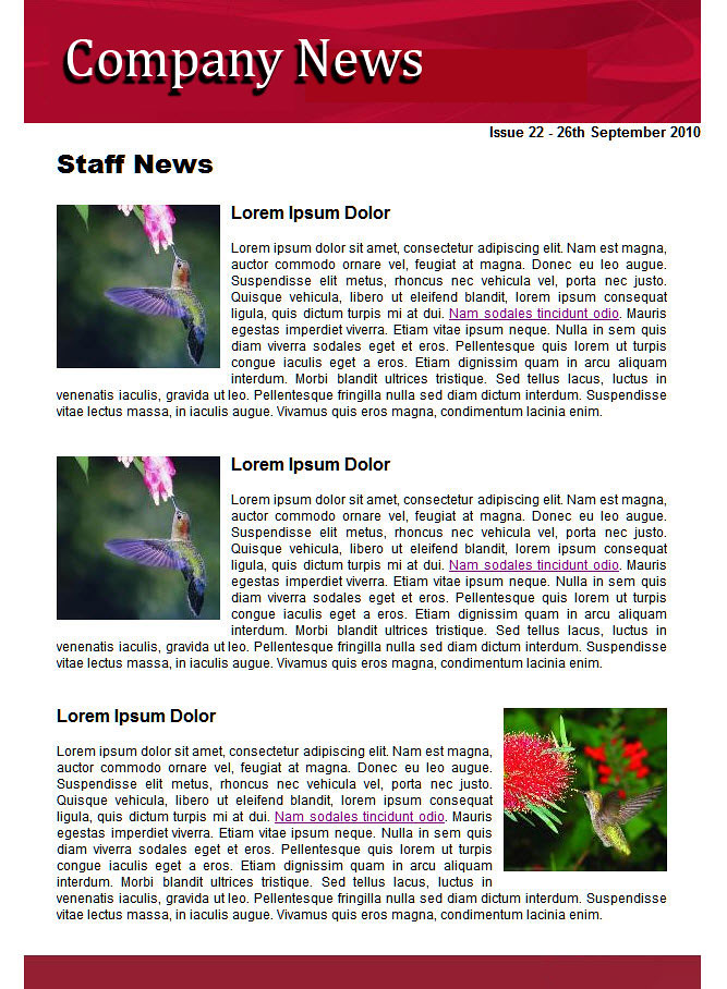internal newsletter examples an internal staff newsletter flickr