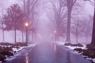 Magill Walk at Swarthmore College | by kat.clark
