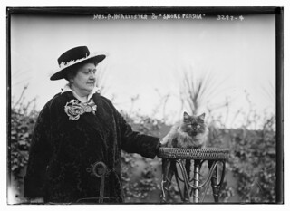 "Mrs. A.McAllister and ""Smoke Persian"" cat  (LOC) 
