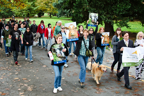2011 Seattle Walk | by Farm Sanctuary