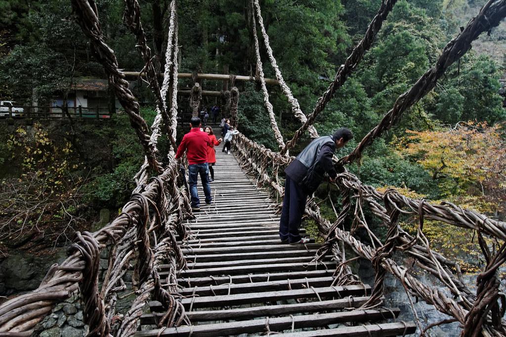 Iya vine bridge