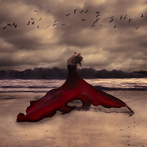 red whale | by brookeshaden