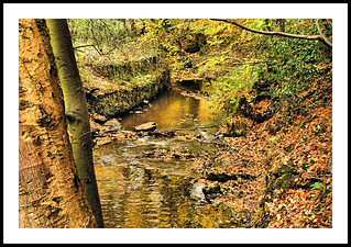 babbling brook | by coulportste