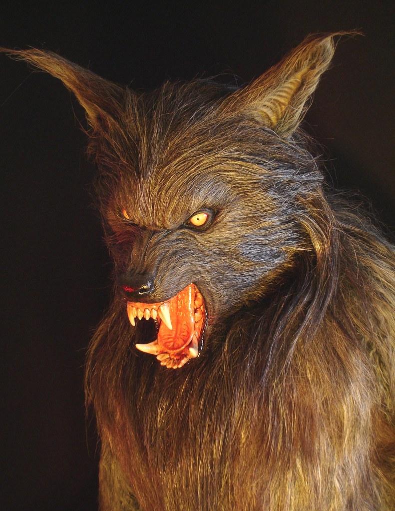 howling wolf fullsize movie prop werewolf wolfman film halloween fx magee fx head shot by