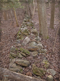 love old stone walls | by kittylitter♥