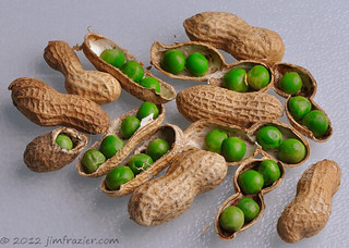 Pea Nuts | by Jim Frazier