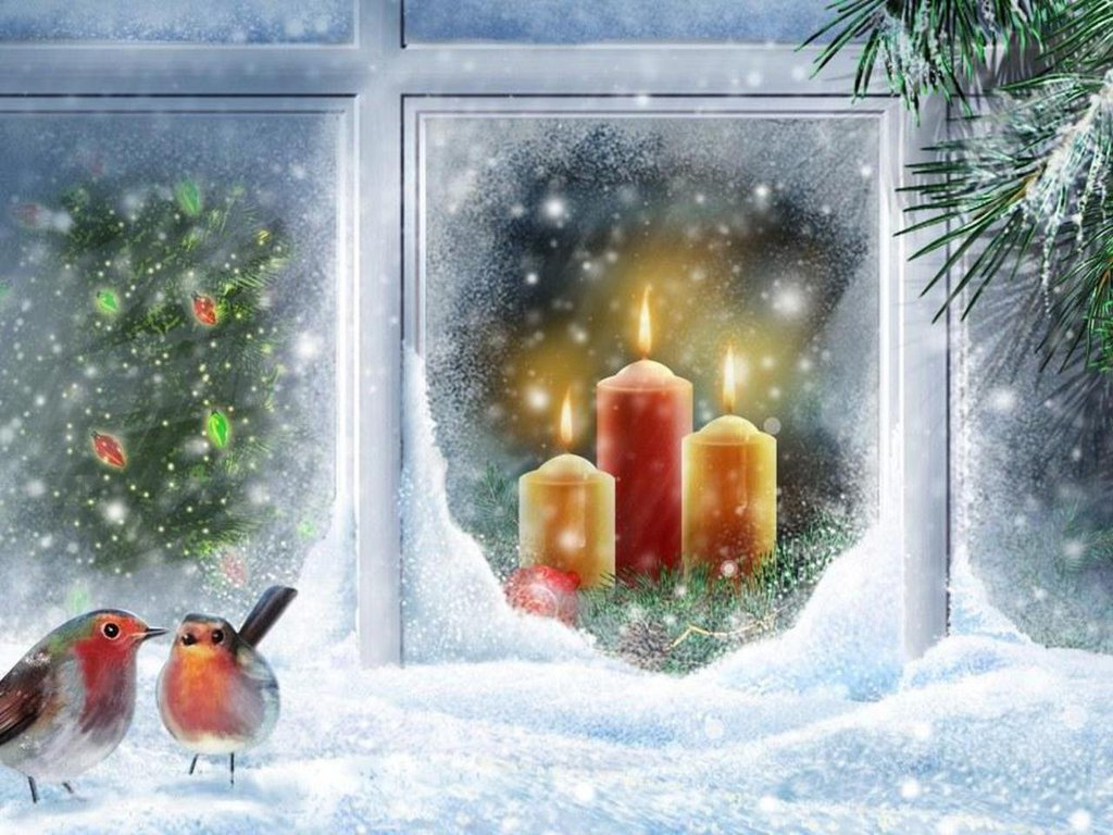 robin at christmas window wallpaper - free christmas scree… | flickr