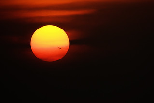 Flying Into The Sun | by VinothChandar