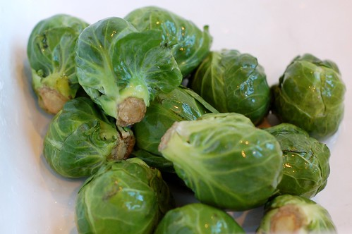 Brussels sprouts in the sink by Eve Fox, Garden of Eating blog, copyright 2011 | by Eve Fox