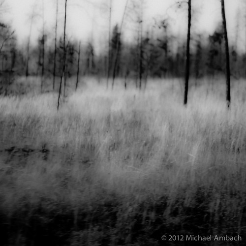 ghosts | by Mike Ambach