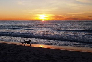 sunsetoverthepacific-2.jpg | by ysolda teague