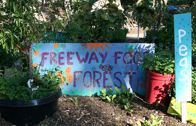 Hayes Valley Farm - Volunteer Day | by WholeSoy