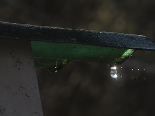 Water Droplets And Sunlight SOOC Telephoto taken with a Canon SX130 IS IMG_1521 | by Ted_Roger_Karson