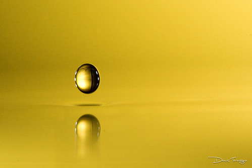Bouncing droplet | by Denis Terwagne