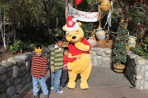 Meeting Holiday Winnie the Pooh | by Castles, Capes & Clones