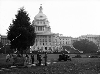 1964 U.S. Capitol Christmas Tree | by USCapitol