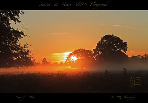 Sunrise at Henry VIII's Playground. | by Pete 5D...©...