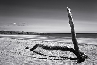Lunan Bay Montrose | by Top Class Photography