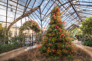 Longwood Gardens at Christmas | by linden.g