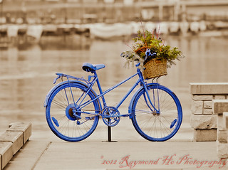Blue Ride (1 of 1) | by Shooter Ray