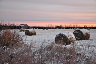 DSC_0378 Sunrise on a back road  SOOC | by Bill Moss (Sault North)