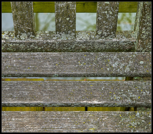 Bench Lines | by ioensis