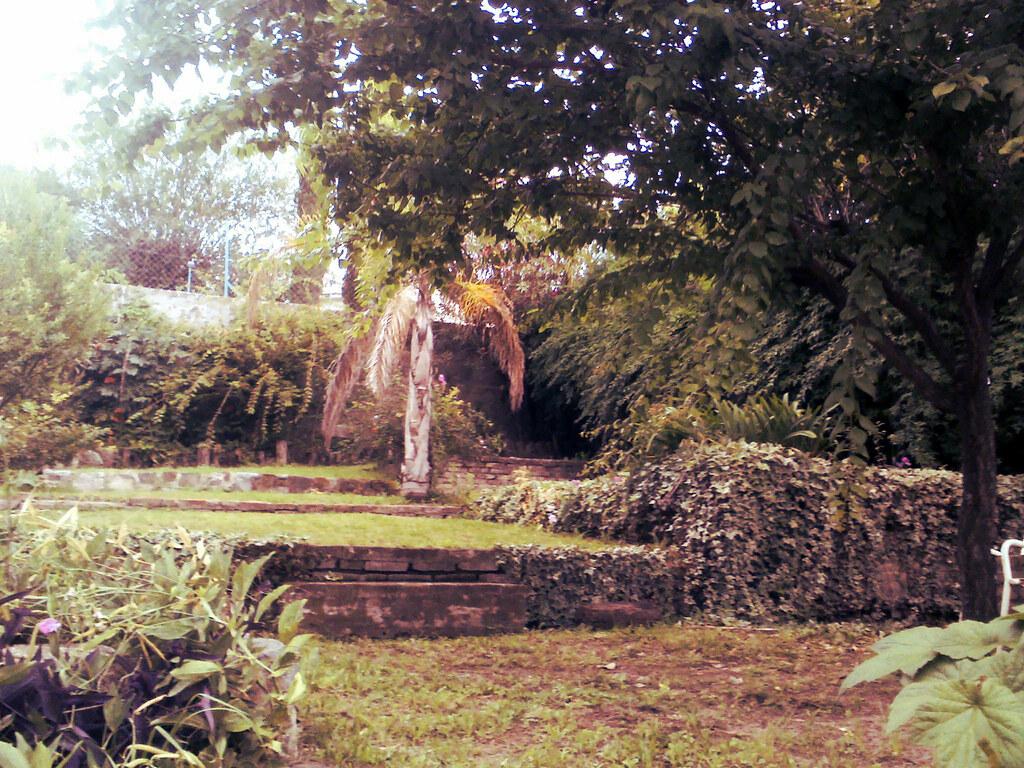 El Jardin De La Alegria Matias Sanchez Flickr