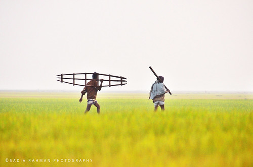 Farmers of the Farmland | by Sadia Rahman