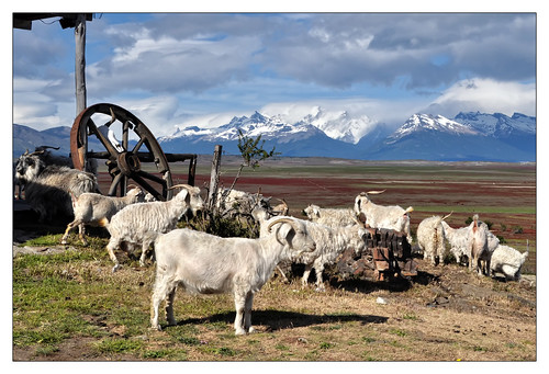 A postcard from Patagonia | by shardox
