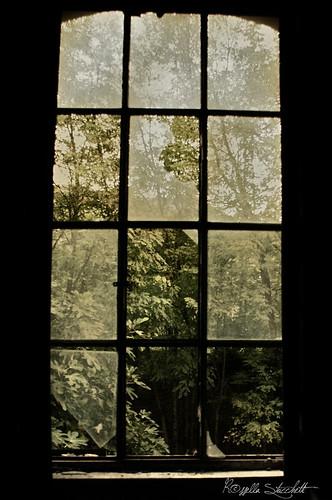Interni con finestre la finestra sapeva della luce gi flickr - Libro la luce alla finestra ...