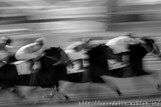 racing... | by necydalis