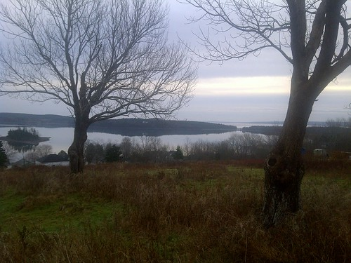 Guysborough Harbour December 1 | by Authentic Seacoast Company