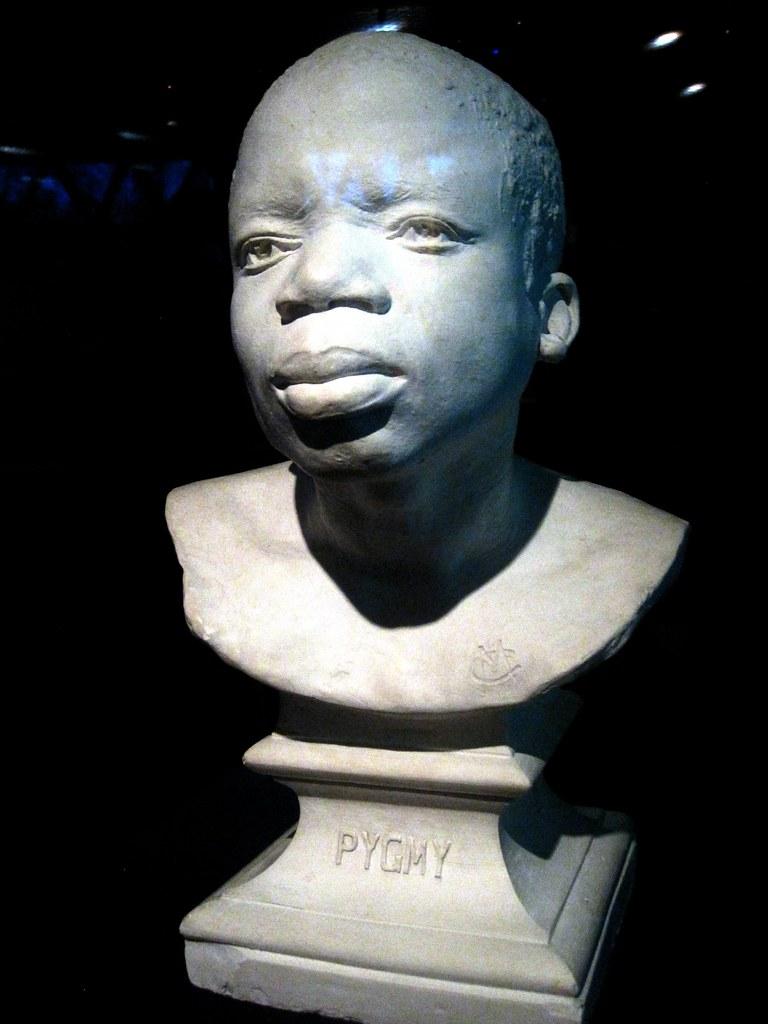 Image result for Ota Benga bust