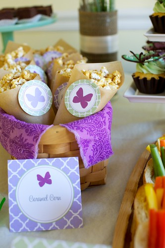 butterfly baby shower | by annieseats