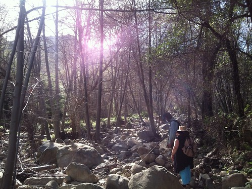 Murrieta Canyon, Matilija Wilderness, Ojai, Ventura County, Southern California | by Naturalist For You