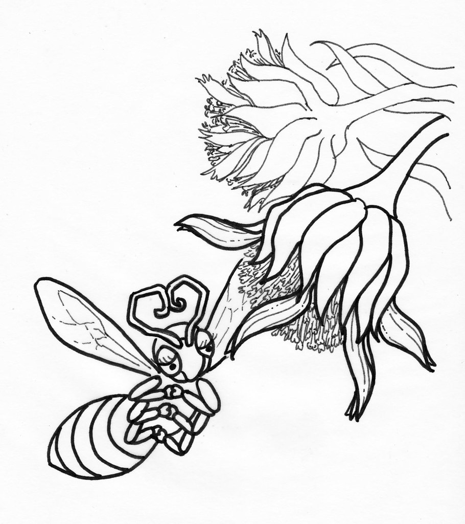 Coloring Book Pages Yellow Faced Bee Silversword Flower
