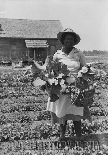 Fresh veggies for sale 1936 african american woman for Old black and white photos for sale