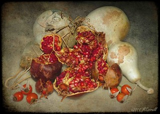Pomegranate Portrayed | by Passion4Nature