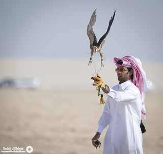 Falcon Festival    (( 7 PHOTOs )) | by RASHID ALKUBAISI