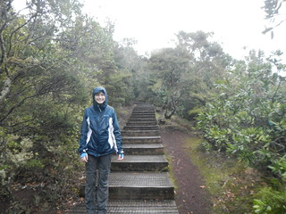 Kelsea on Rangitoto Summit Trail