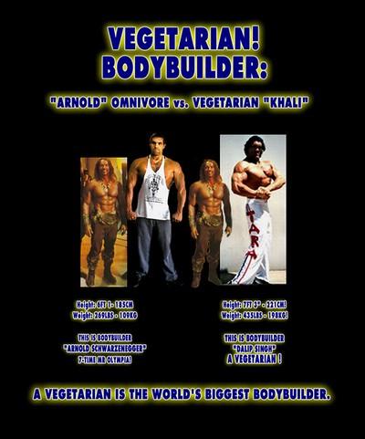 Ronnie Coleman Vs Arnold Largest Bodybuilder in...