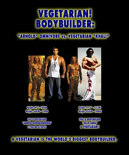 Largest Bodybuilder in the World Guinness Book of World Records vs Arnold Carnivore Caveman Diet - 4 | by Vegetarian-Vegan-Bodybuilding-Info