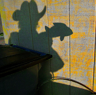 making shadow puppets (fish) behind the shed. My neighbors think that I'm crazy | by lauraxfire...
