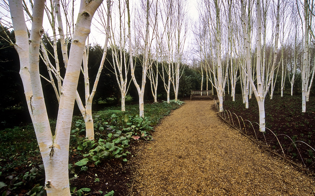 ... Anglesey Abbey Winter Gardens (National Trust), Cambridgeshire, UK   A  Garden Designed