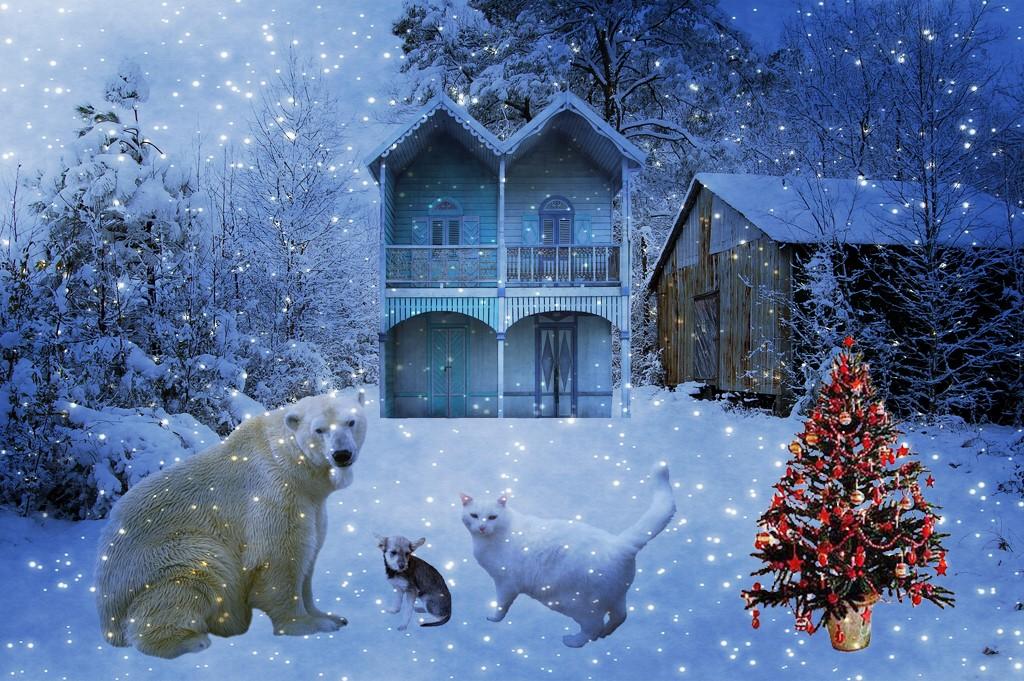Snowy Christmas Scene With Three Animal Buddies   Snowy Chri…   Flickr